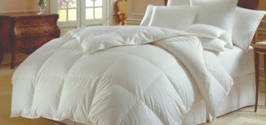 Основные критерии выбора одеяла