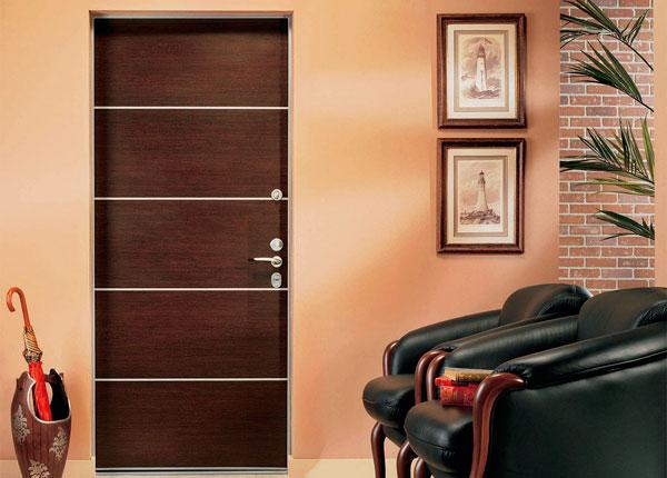 Что лучше использовать для отделки двери