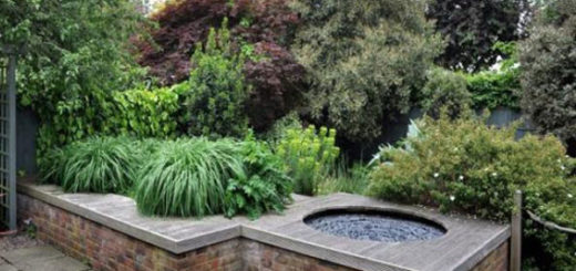 Сад: особенности стиля модерн